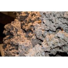 Piatra Uscata de Recif Reef Stone-Pukani